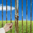 Stock Photo: Hand hold key unlocking door with green meadow and sky