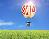 Single lamp balloon with 2014 word on it, meadow, sky — Stock Photo