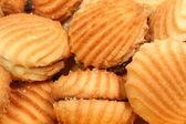Biscotti con un ripieno da marmellata sotto forma di cockleshells di mare — Foto Stock