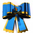 Stock Photo: Blue isolated celebratory bow for gift