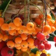Stock Photo: Straw small basket with autumn berries and flowers