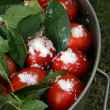 Stock Photo: Tomatoes with currant leaves and salt in big pan with arm vertic