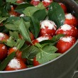 Tomatoes with currant leaves and salt in big pan with arm — Stock Photo #14468569