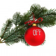 Christmas tree branch, isolated — Stock Photo #15408443