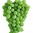 Green grape cluster — Stock Photo