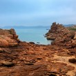 Pink Granite Coast — Stock Photo #12218970
