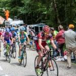 The Cyclist Evans Cadel — Stock Photo #12918556