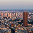 Paris- aerial view — Stock Photo #13566300