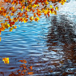 Canal in Autumn — Stock Photo
