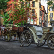 Row of Carriages - Stock Photo