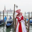 Venetian Costume — Stock Photo #19478041