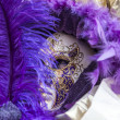 Venetian Disguise-Close-up - Foto Stock