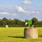 Hay bales during Le Tour de France — Stock Photo
