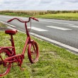 Red Bicycle on the Roadside — Stock Photo