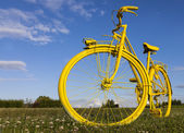 Old Yellow Bicycle in a Field — Stock Photo