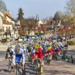The famous road bicycle race Paris-Nice — Stock Photo #26550881