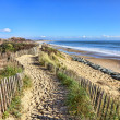 Footpath on the Atlantic Dune in Brittany — Stock Photo #31101993