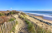 Footpath on the Atlantic Dune in Brittany — Stock Photo
