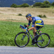 Постер, плакат: The Cyclist Nicolas Roche