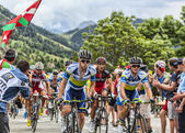The Peloton on Alpe D'Huez — Stock Photo