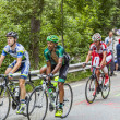 Cyclists Climbing Alpe D'Huez — Stock Photo #38701851