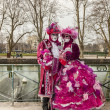 ANNECY, FRANCE, MARCH 15, 2014: Disguised Couple — Stock Photo