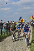 Cyclists Riding Paris-Roubaix 2014 — Stock Photo