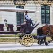 Постер, плакат: Carriage in Front of Chambord Castle
