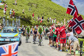 The Peloton in Pyrenees Mountains — Stock Photo