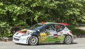 Simone Tempestini- Dorin Pulpea- Transylvania Rally 2014 — Stock Photo