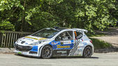 Francois Delecour - Dominique Savignoni- Transylvania Rally 2014 — Stock Photo