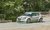 Dan Grtofan-  Eugen Rotaru- Transylvania Rally 2014 — Stock Photo