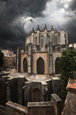 View of Catedral de Gerona. Spain. — Stock Photo