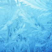 Ornament painted frost on the window — Stockfoto