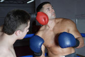 Two boxers in training — Foto Stock