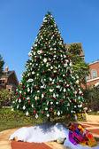 Noel ağacı ortasında yeni bir yerleşim bölgesi — Stok fotoğraf