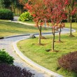 The brick footpath winding its way through a tranquil garden.  — Stock Photo