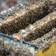 Stock Photo: Opening bee hive