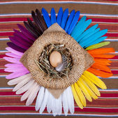 Egg Basket Rainbow Feathers Top View — Stock Photo
