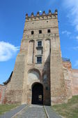 Entrance to the castle in Lutsk — Stock Photo