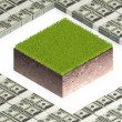 Ground block with paper dollars — Stock Photo