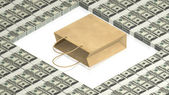 Paper bag with dollars — Stock Photo