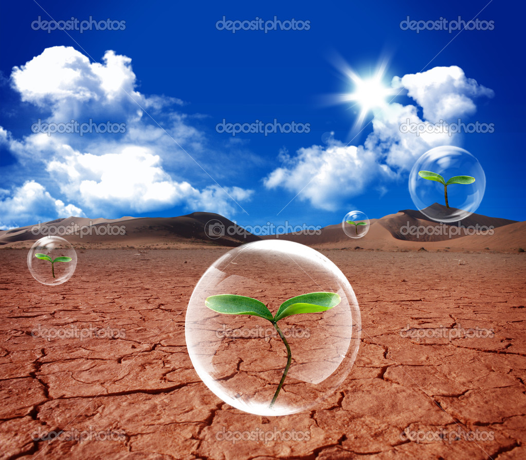 Water bubble in arid soil desert — Stock Photo ...