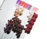 Hair Colors Set. — Stock Photo