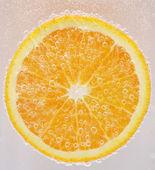 Orange — Photo