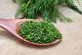 Fines herbes — Photo