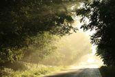 Venkovské silnici za svítání — Stock fotografie