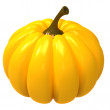 Pumpkin — Stock Photo