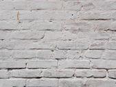 Textura de parede de tijolo branco velho — Fotografia Stock