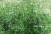 Green grunge background — Stock Photo